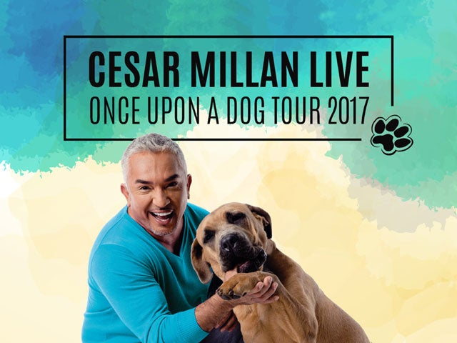 "Watch Cesar Millan ""Once Upon A Dog"" show trailer"
